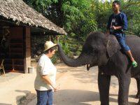 helle-med-elefant-2